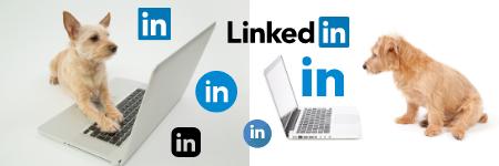 social media marketing, social media training and coaching, London